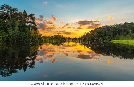 Sunet in canoe country Stock photo © wildnerdpix