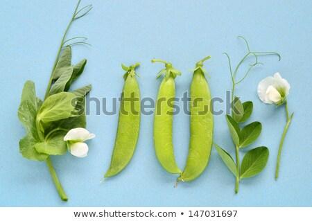 fresco · jardim · ervilhas · branco · natureza · folha - foto stock © sherjaca