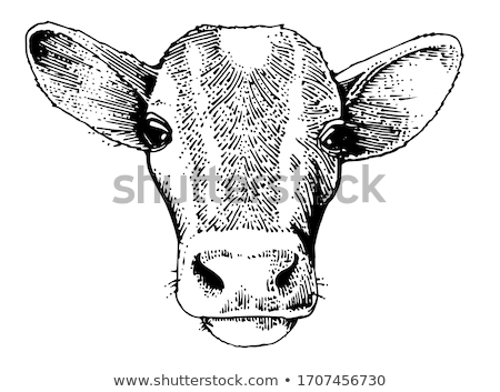 Rural crayon pointe détail bois noir Photo stock © prill
