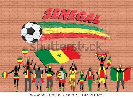 フラグ セネガル レンガの壁 描いた グランジ テクスチャ ストックフォト © creisinger