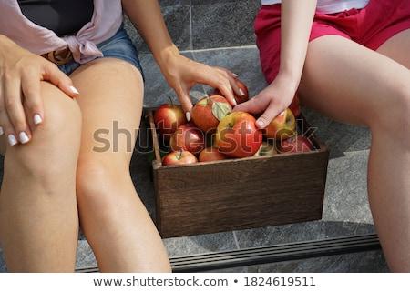 fit apple beauty stock photo © lithian