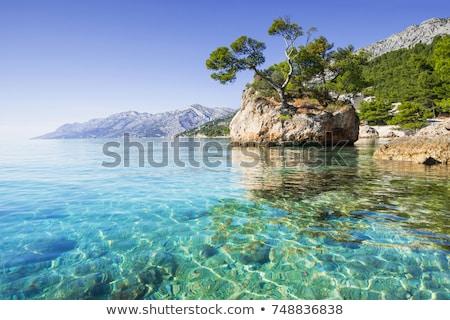 Zee kustlijn dubrovnik zuidelijk Kroatië landschap Stockfoto © rognar