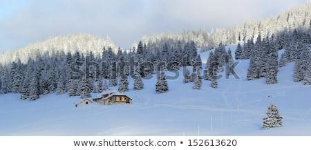 inverno · vale · montanha · madeira · cidade · floresta - foto stock © elenarts
