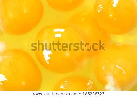 Ei gelb Eigelb isoliert weiß Frühling Stock foto © lunamarina