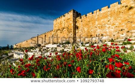 Золотые Ворота Иерусалим Израиль старые город зима Сток-фото © AndreyKr