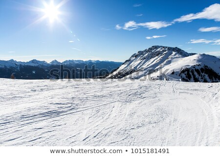 Ski slope, off-piste with trace from avalanche Stock photo © BSANI
