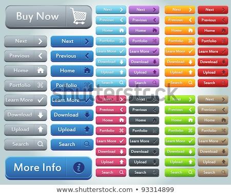 Stock fotó: Színes · webes · gomb · szett · vektor · kék · szín