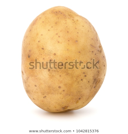Single yellow raw potato Stock photo © boroda