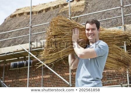 thatcher carrying bundles of reeds working on roof stock photo © highwaystarz