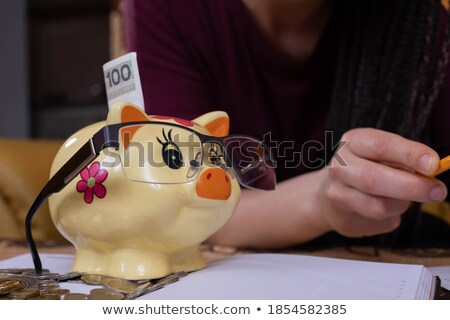 all the money in a moneybox isolated stock photo © oleksandro