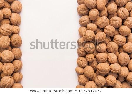 Many Walnut Piled Up Stock photo © Cipariss