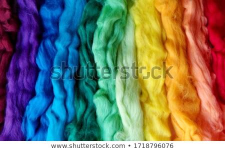шерсти цвета радуга текстуры Nice моде Сток-фото © jonnysek