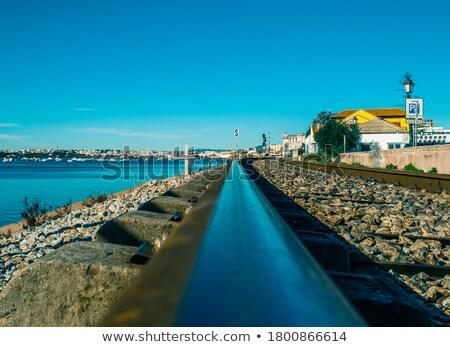 鉄道 海岸 海岸線 鉄道 トラック 森林 ストックフォト © Aitormmfoto