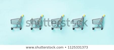 Fogyasztó trendek vásárlás kutatás divat követő Stock fotó © Lightsource