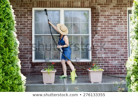 Woman washing the exterior windows of a house Stock photo © ozgur
