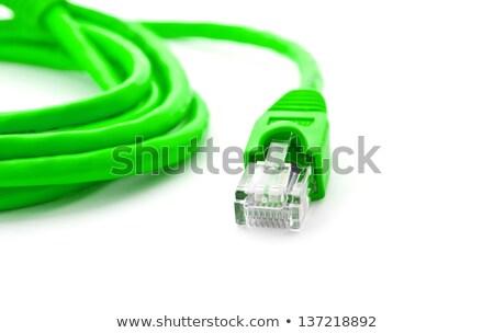Zielone kabel komputerowy odizolowany biały Internetu technologii Zdjęcia stock © karandaev