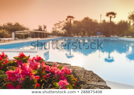 Luxury swimming pool with beautiful views of Lake Garda in Italy Stock photo © master1305