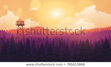 Incendios forestales ver torre silueta alto cielo Foto stock © 5xinc