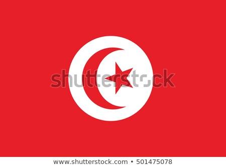 Tunis bandeira página papel projeto lua Foto stock © fuzzbones0