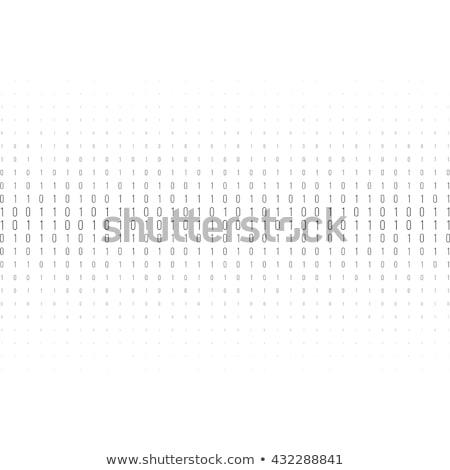 Bináris kód üzlet internet absztrakt háttér bár Stock fotó © Paha_L
