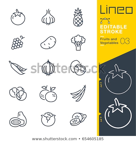 tomato line icon stock photo © rastudio