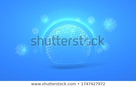 Blue Shield Stock photo © shutswis