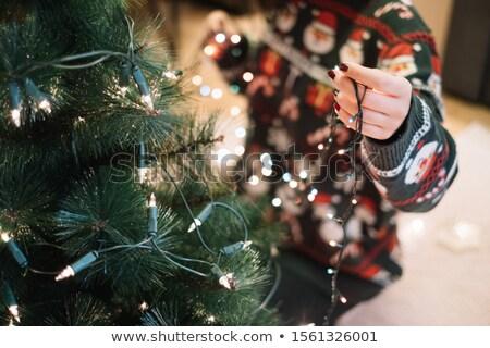 Kız Noel dekorasyon ağaç şapka Stok fotoğraf © ndjohnston