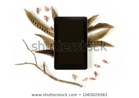 candle on tablet stock photo © cosma