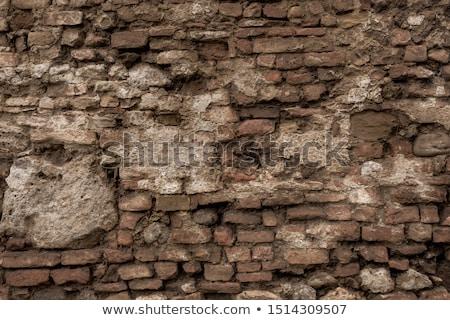 Erozja murem krawędź wody lata Zdjęcia stock © AlphaBaby