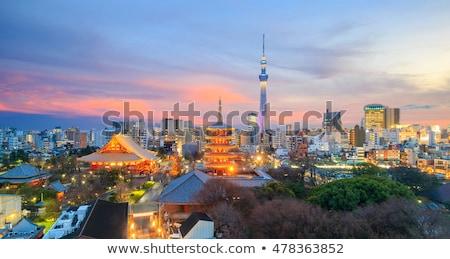 Tokyo ufuk çizgisi Japonya nehir panorama gökyüzü Stok fotoğraf © vichie81