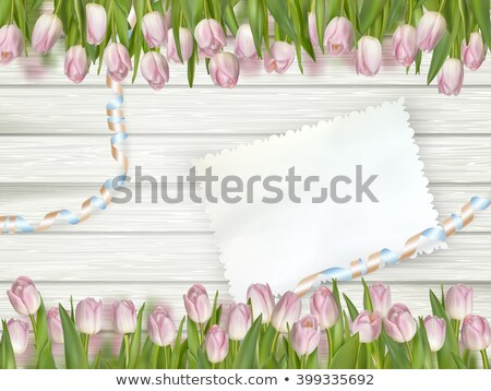 old card and fresh tulips eps 10 stock photo © beholdereye