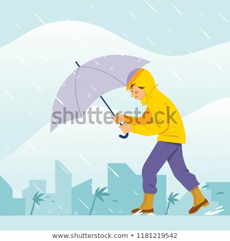 Rainstorm in the city Stock photo © bluering