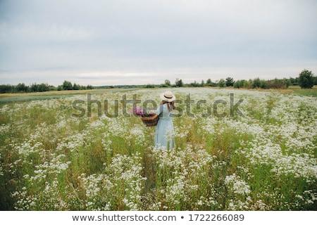 mulher · loira · jardim · belo · retrato · primavera · flor - foto stock © chesterf