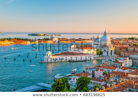aerial view to venice roofs stock photo © vapi