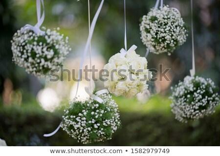 gras · bloemen · verkoop · bal · helling - stockfoto © barbaliss