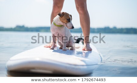 Stock photo: Woman Swimming in next to boat