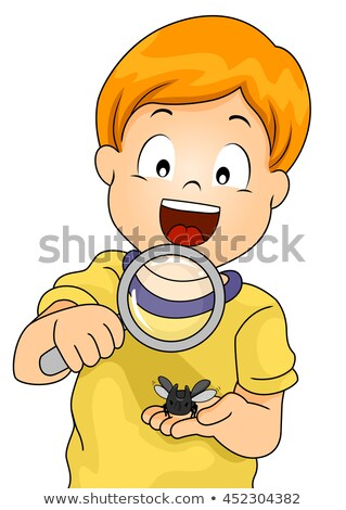 Kid Boy Rhinoceros Beetle Study Stock photo © lenm