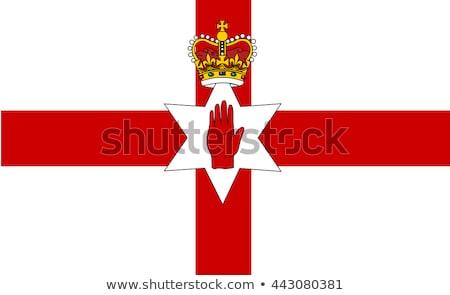 Stock fotó: Írország · közgazdaságtan · zászló · üzlet · diagram · oszlopdiagram