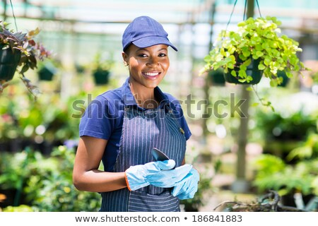 Beautiful cute woman gardener standing in greenhouse holding vase pot for plants. Stock photo © deandrobot