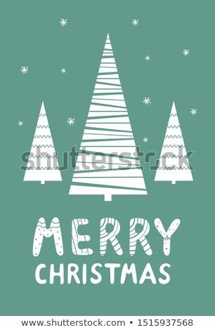 Güzel Noel festival güzel tebrik kartı kış Stok fotoğraf © SArts