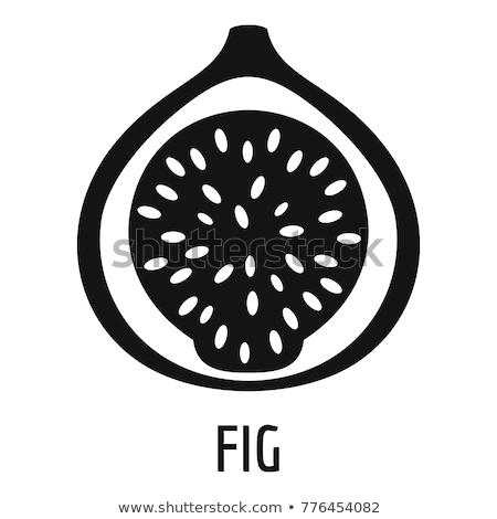 Vijg icon logo symbool vector natuur Stockfoto © blaskorizov