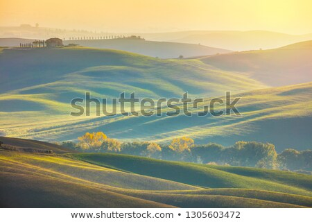 Stockfoto: Sunny Surrise Landscape - Wavy Fields At The Morning