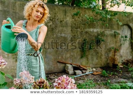 old woman with hydrangea flower at summer garden Stock photo © dolgachov
