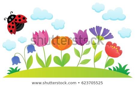 Fleur de printemps sujet image fleur printemps nature Photo stock © clairev