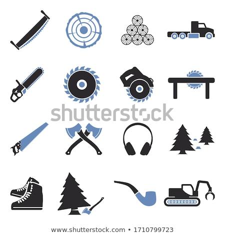 Stock fotó: Vektor · szett · fűrész · fa · erdő · otthon