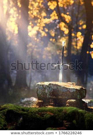 Antica mitico spada set drammatico panorama Foto d'archivio © solarseven