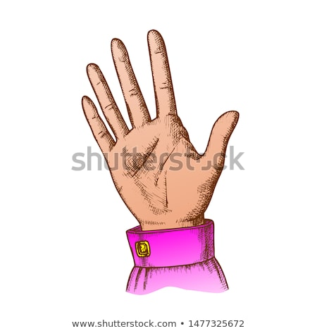 Color Female Hand Make Gesture Five Fingers Up Vector Stock photo © pikepicture