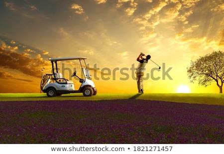 Jogador de golfe árvore masculino vermelho camisas cinza Foto stock © lichtmeister