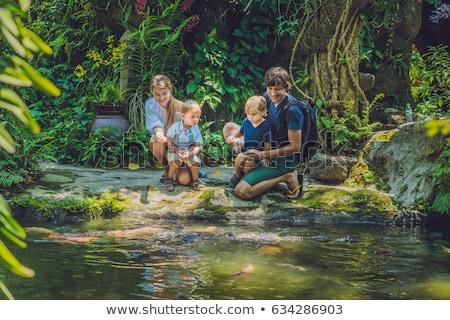 Boldog család etetés színes trópusi tavacska család Stock fotó © galitskaya
