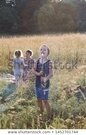 Boy eating a marshmallow after roasting it over a campfire Stock photo © przemekklos